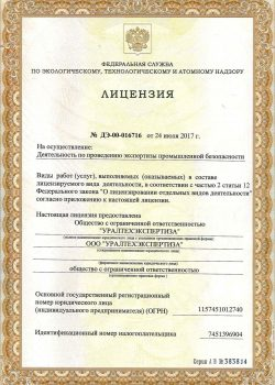 Лицензия ЭПБ